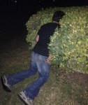 Guy-Passed-Out-In-A-Bush