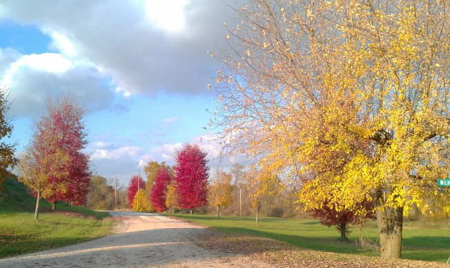 Fall in the Midwest