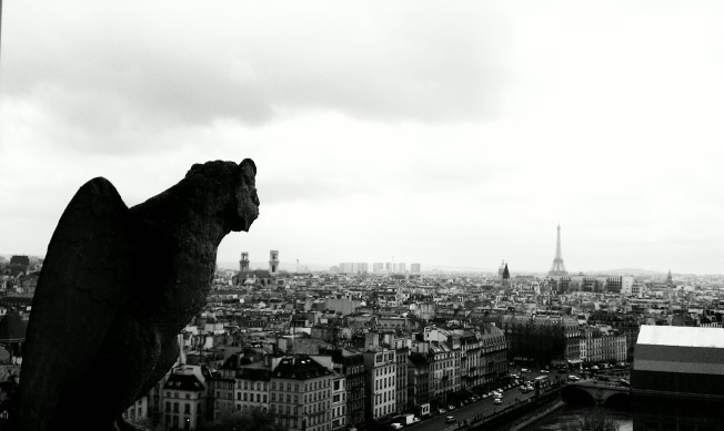 View from the top of Notre Dam