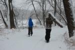 Winter Woods 10