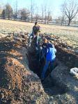 digging4