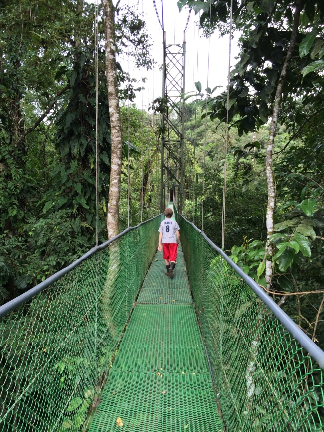 Canopy Bridge, Tirimbina Rainforest, Costa Rica