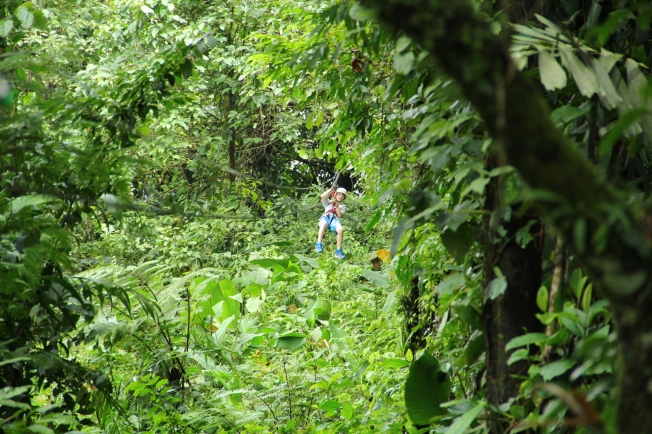 Zip Line, Arenal Park, La Fortuna , Costa Rica