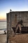 Beaches and murals, Monterey,ca