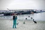 photo-jul-28-11-39-36-am-1
